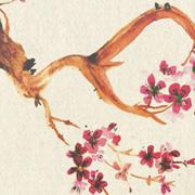 Autre exemple : affiche aikido hanshi